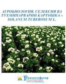 Агробиология, селексия ва тухмипарварии картошка – Solanum tuberosum L