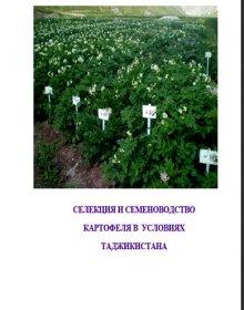 Селекция и семеноводство картофеля в условиях Таджикистана